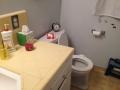Vanity_-_toilet_before